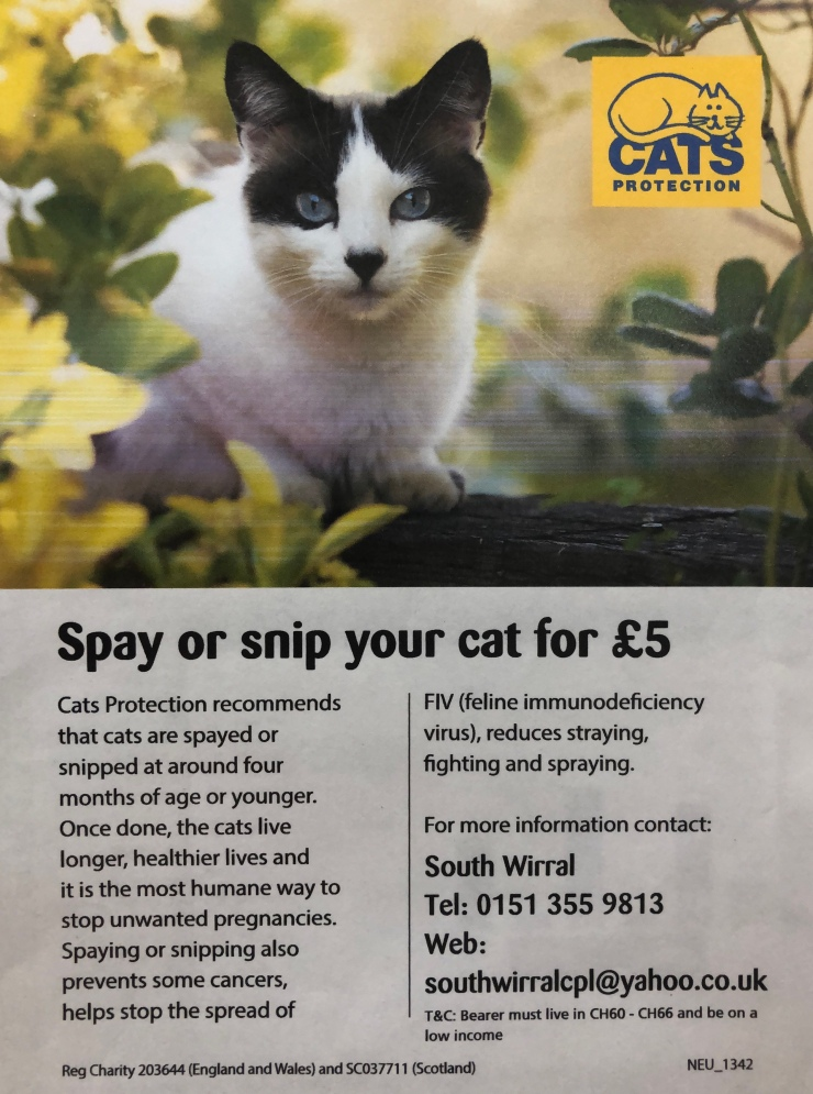 vet-wirral wirral-vet vet-Ellesmere-Port not-for-profit-vet wirral-animals enfield-road gentle-at-home-euthanasia gentle-euthanasia wirral-dogs wirral-cats cheap-vet